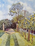 "An Exquisite Day at the Winery by Sharon Parker Watercolor ~ 20"" x 16"""