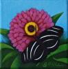 Flutter No. 1