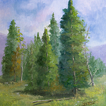 Teresa Johnson - The Air I Breathe - Landscapes of Colorado