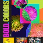 Irene Bee Kain - Bold Colors Show & reception