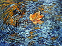 "One leaf washed up in the storm by Stephen Dobson Oil ~ 18"" x 24"""
