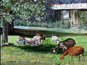 "Munching in the Shade by Stephen Dobson Oil ~ 12"" x 16"""