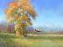 Autumn in Texas by Kathleen Casey