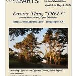 """Lucinda Johnson - Sebastopol Center for the Arts, Annual Favorite Thing """"TREES"""""""