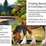 Pat Meier-Johnson - Finding Beauty in Everyday Life
