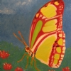 "Malechite Butterfly by Denise Marie Brown Oil ~ 10"" x 8"""