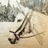 Mule Study