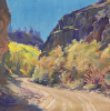 Sapinero Canyon Color