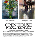 Margaret Dyer - PushPush Arts Spring Festival