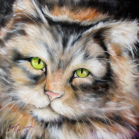 SWEET TABBY Longhair by M BALDWIN Oil ~ 18 x 18