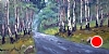 "Rainy Day Near Endo by Mike Bagdonas Oil ~ 12"" x 24"""