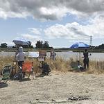 Laura Culver - Plein Air Oil Painting Classes on Tuesdays