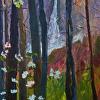 Dogwood and Falls