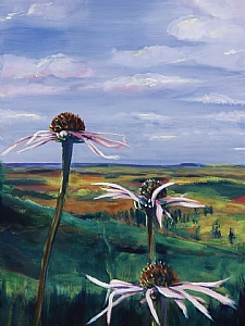Pale Purple Coneflower Above a Patchwork Plain by Michelle Leivan Oil ~ 12 x 9
