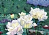 "Bellingrath Roses by Jacqueline Davidson Color Pointillism ~ 8"" x 6"""