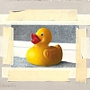 Duck Taped by Jay Davenport - Oil