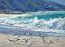 The Gulls of River Beach by Sibyl Johnson