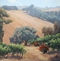 Rolling Vines by Robert Sandidge Oil ~ 24 x 24