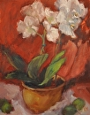 White Orchids by Karen Meredith Oil ~ 14 x 11
