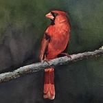 """Ted Head - """"Seeing Red"""" Watercolor Workshop"""
