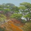 Torrey Pines 12-31-2011