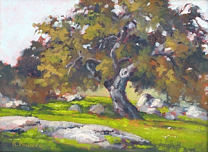 "Live Oak Early Spring by Richard T Powers Oil ~ 9"" x 12'"