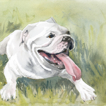Kathy Rennell Forbes - Painting Your Pets in Watercolor