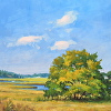 Marsh Land, MA