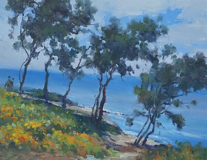 LaJolla Cove  Trail by Mehdi Fallahian  ~ 11 x 14