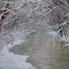 A Frosted Chaska Creek  rzd