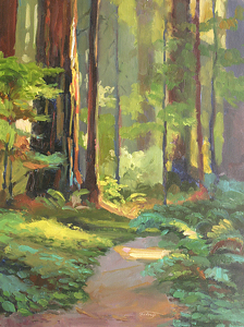 Redwood walk by Sterling Hoffmann Giclee ~  x