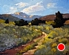 "High Desert, Rabbit Brush In Bloom by Janice Druian Oil ~ 16"" x 20"""