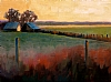 "After Sunset by Janice Druian Oil ~ 16"" x 20"""