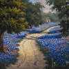Bluebonnet Trail