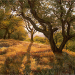 Jim Tyler - Painting Hills & Fog with Pastels and an Underpainting