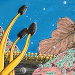 Gary Raham - Art of Science Exhibition