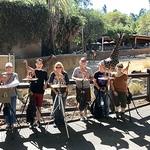 Adam Matano - Animal Sculpture Zoo Class