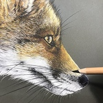 Lynette Orzlowski - Animals in Pastels - In the pursuit of Photorealism