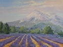 Lavender Fields by Janis Ellison Pastel ~ 18 x 24