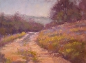 Poppy Fields by Janis Ellison Pastel ~ 9 x 12