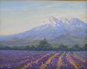 High Planes Lavender by Janis Ellison Pastel ~ 9 x 12