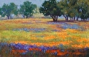 Lupine Wins by Janis Ellison Pastel ~ 11 x 17