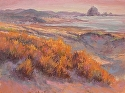 Coastal Evening Shadows by Janis Ellison Pastel ~ 18 x 24