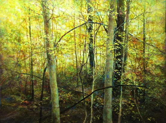 Autumn Metamorphosis: Within the Appalachian Woods - Acrylic