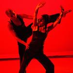 """BluSeed Studios - """"La Dansa"""""""