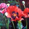 POPPIES unframed