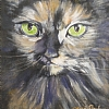 Jessica's Cat ll by Nancy Park Oil ~ 10 x -