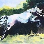 Cheri Isgreen - The Horse in Art