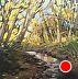 """Shallow Creek by LYNNE FEARMAN Oil ~ 3"""" x 3"""""""