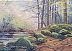 "Northwest Woods by LYNNE FEARMAN Oil ~ 5"" x 7"""